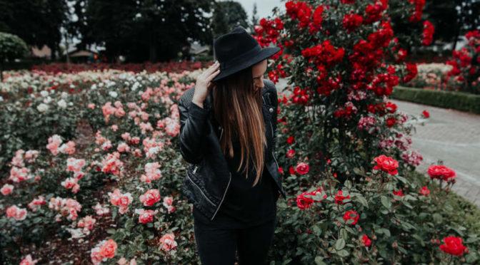 Zakładanie ogrodów jak spełnić swoje marzenia